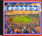 THE BLUE SEA OF IBROX